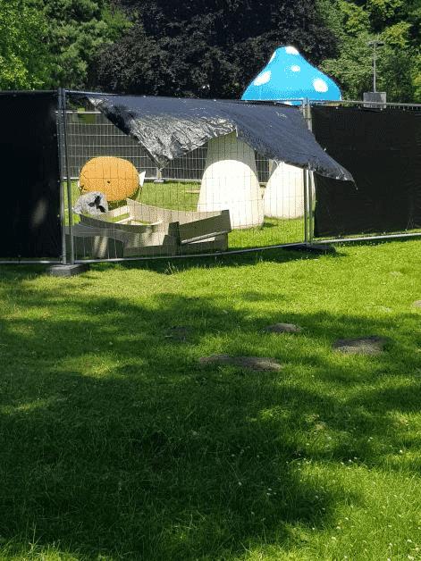 Aufbau der Habitate in Dortmund hat begonnen! 3