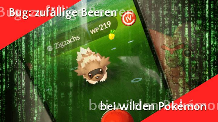 Bug in Version 0.111.2 lässt wilde Pokémon Beeren haben 9