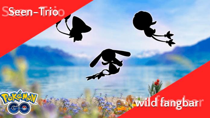Legendäres Seen-Trio wild gesichtet! 5