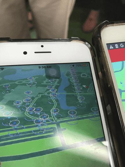 Safari Zone in Tainan - Shiny Pinsir weltweit! 11