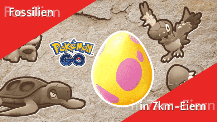 Fossil-Pokémon in 7km-Eiern 5
