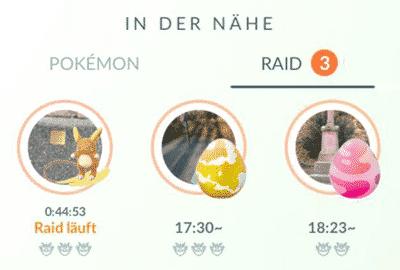 Fern-Raid